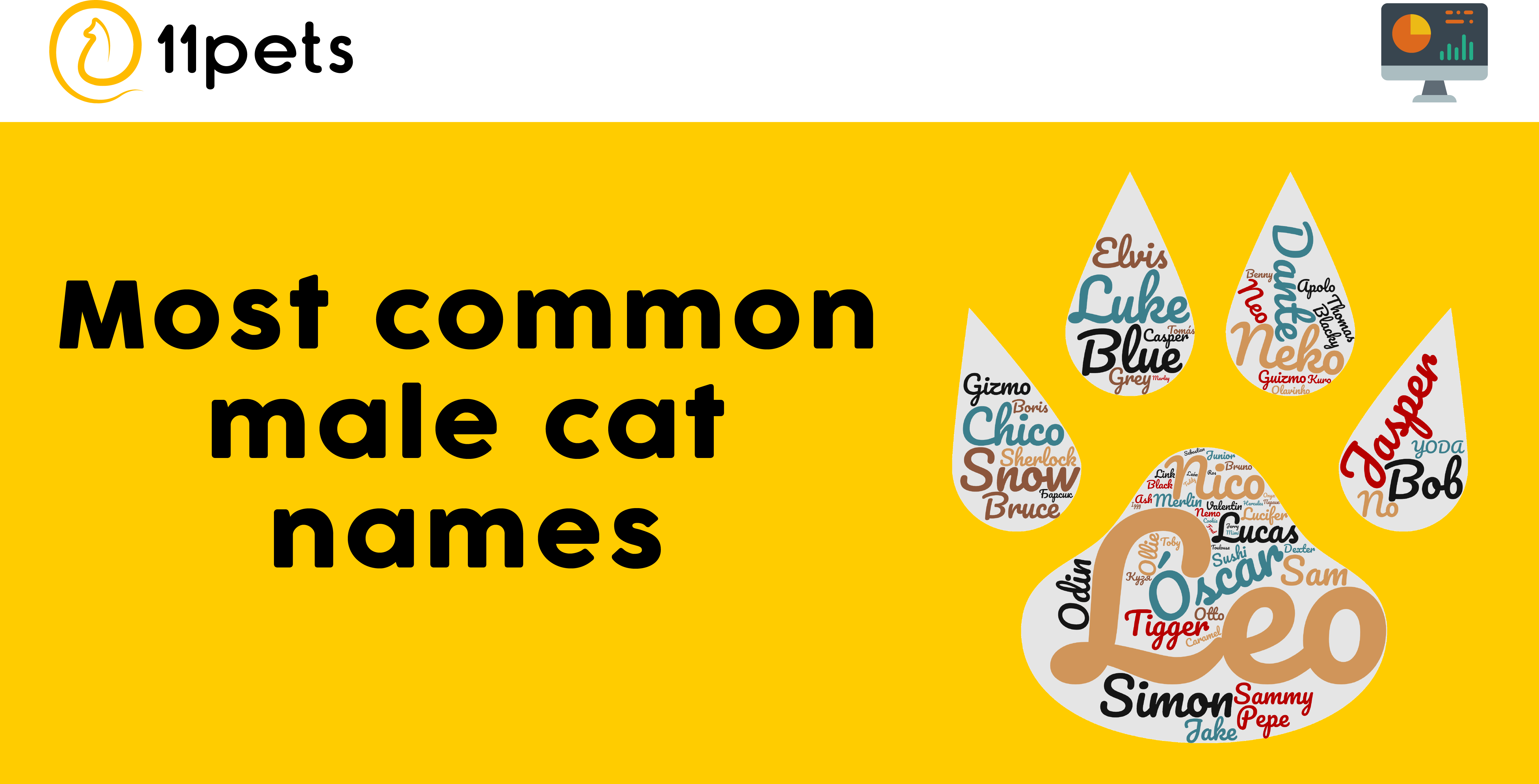 Most common male cat names