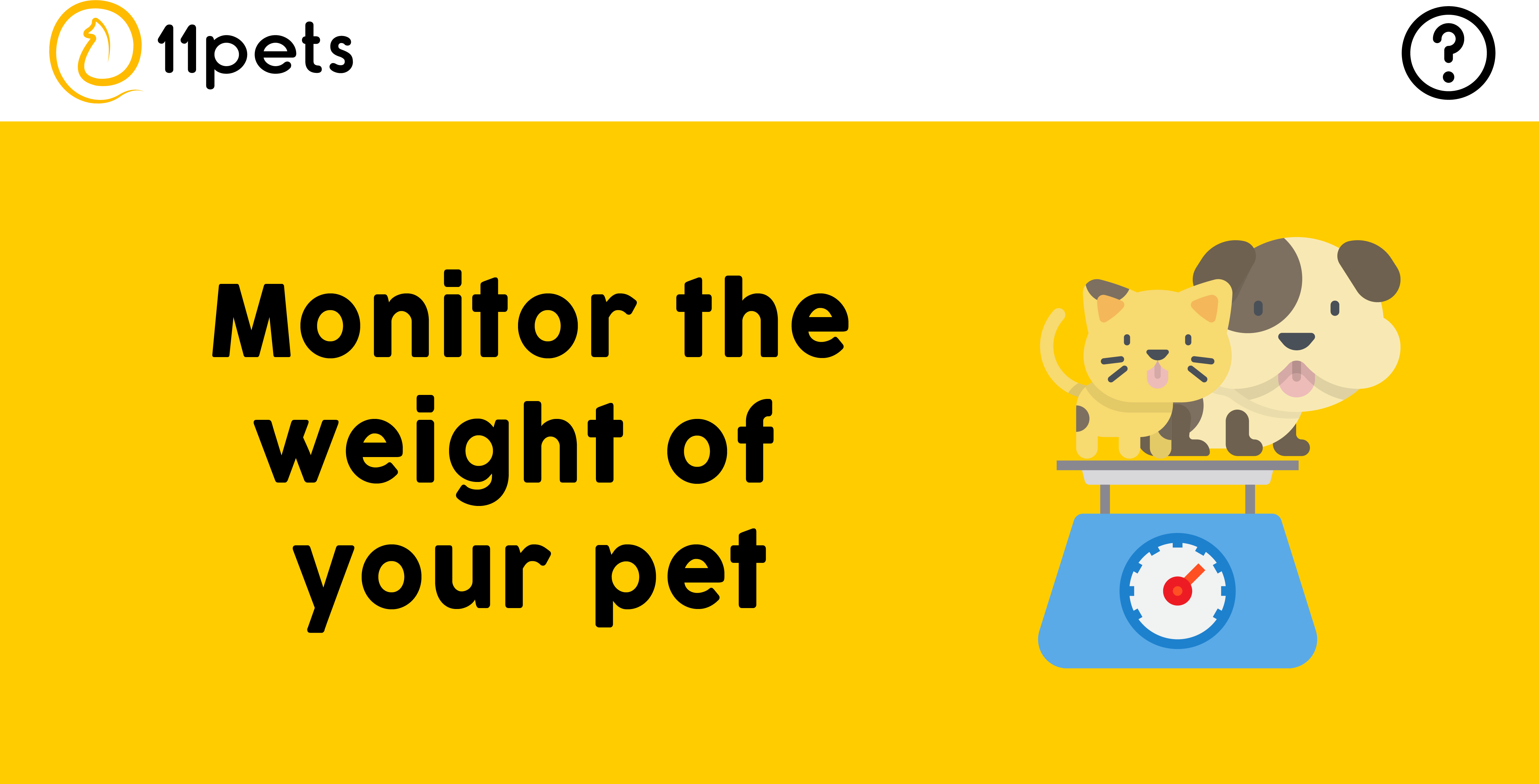 Monitor the weight of your pet