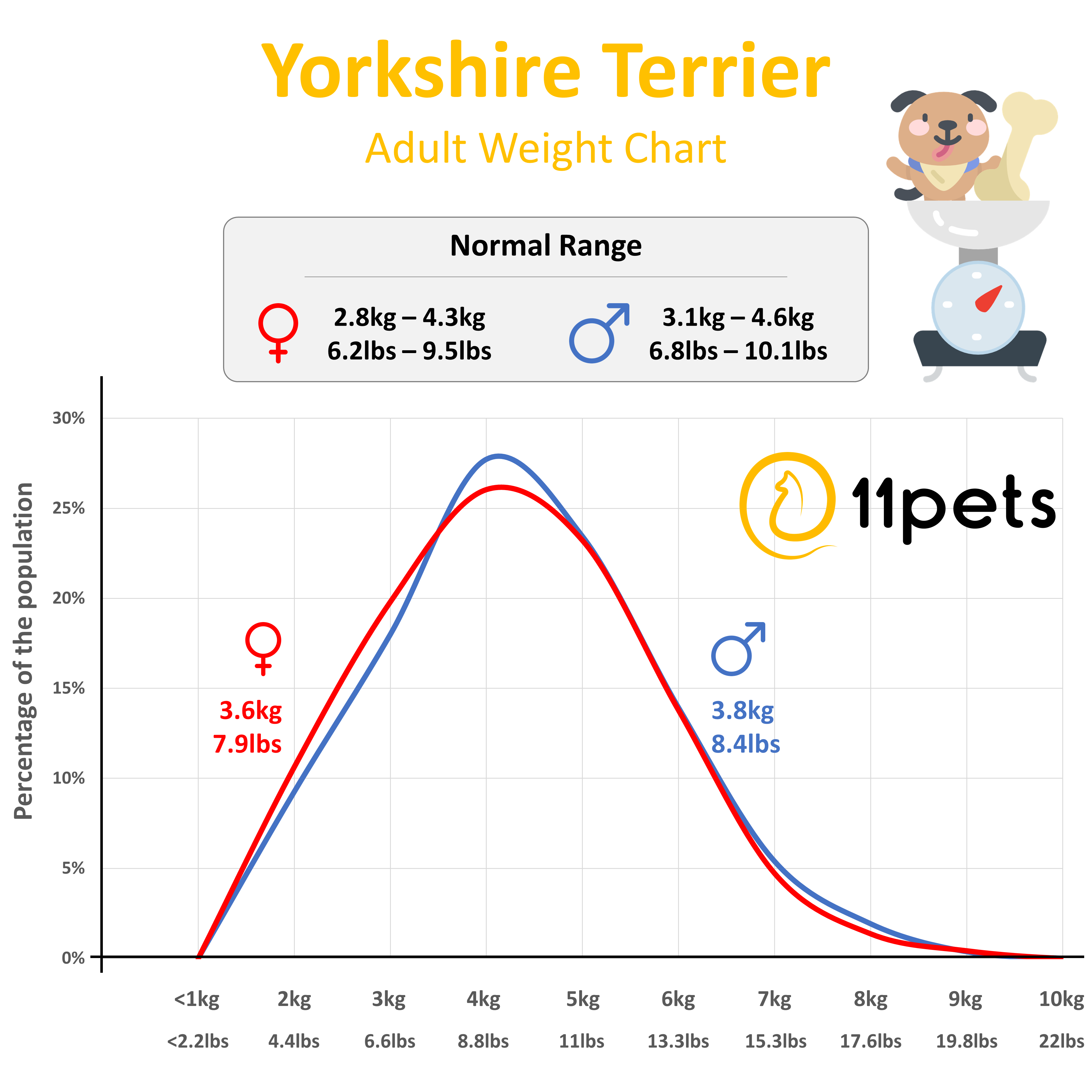 Typical Weight For Yorkshire Terrier Dogs