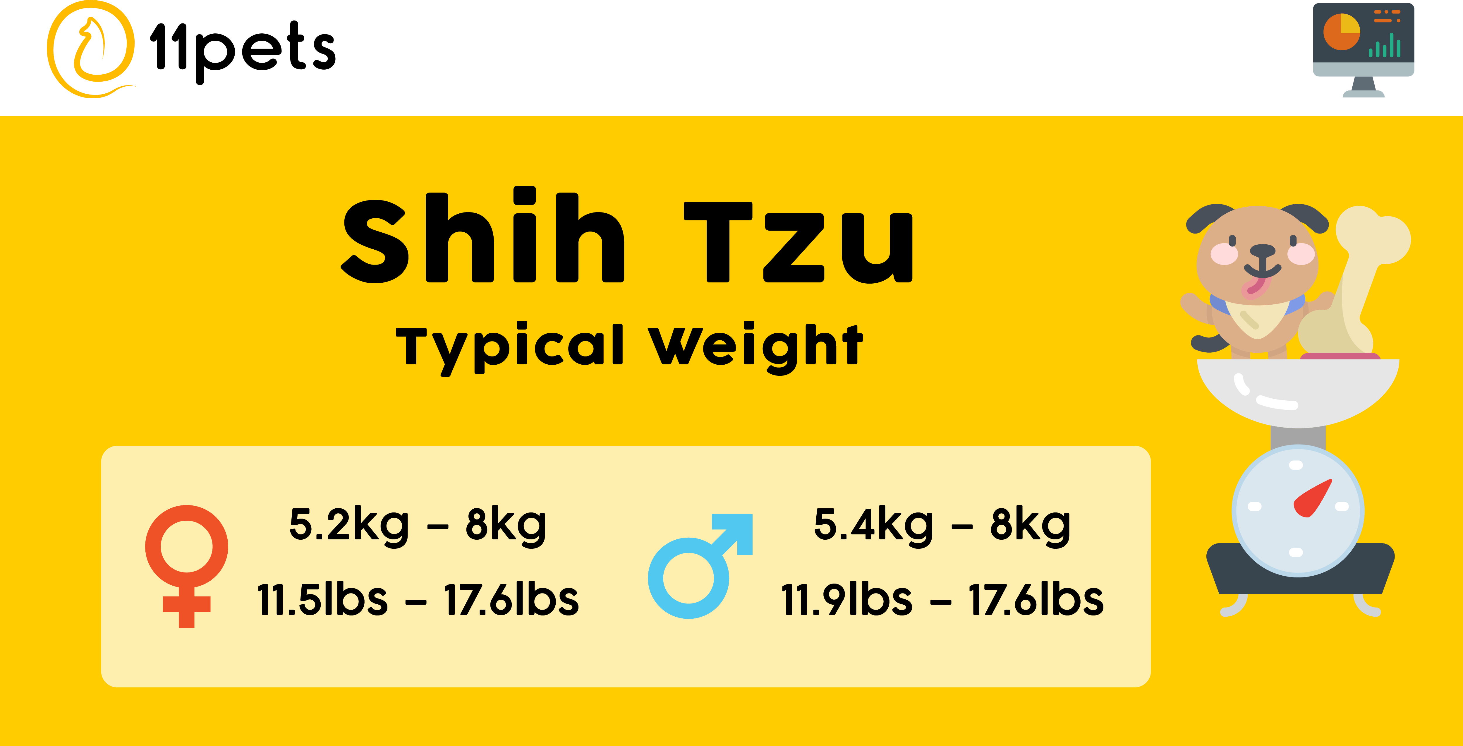 Typical weight for Shih Tzus