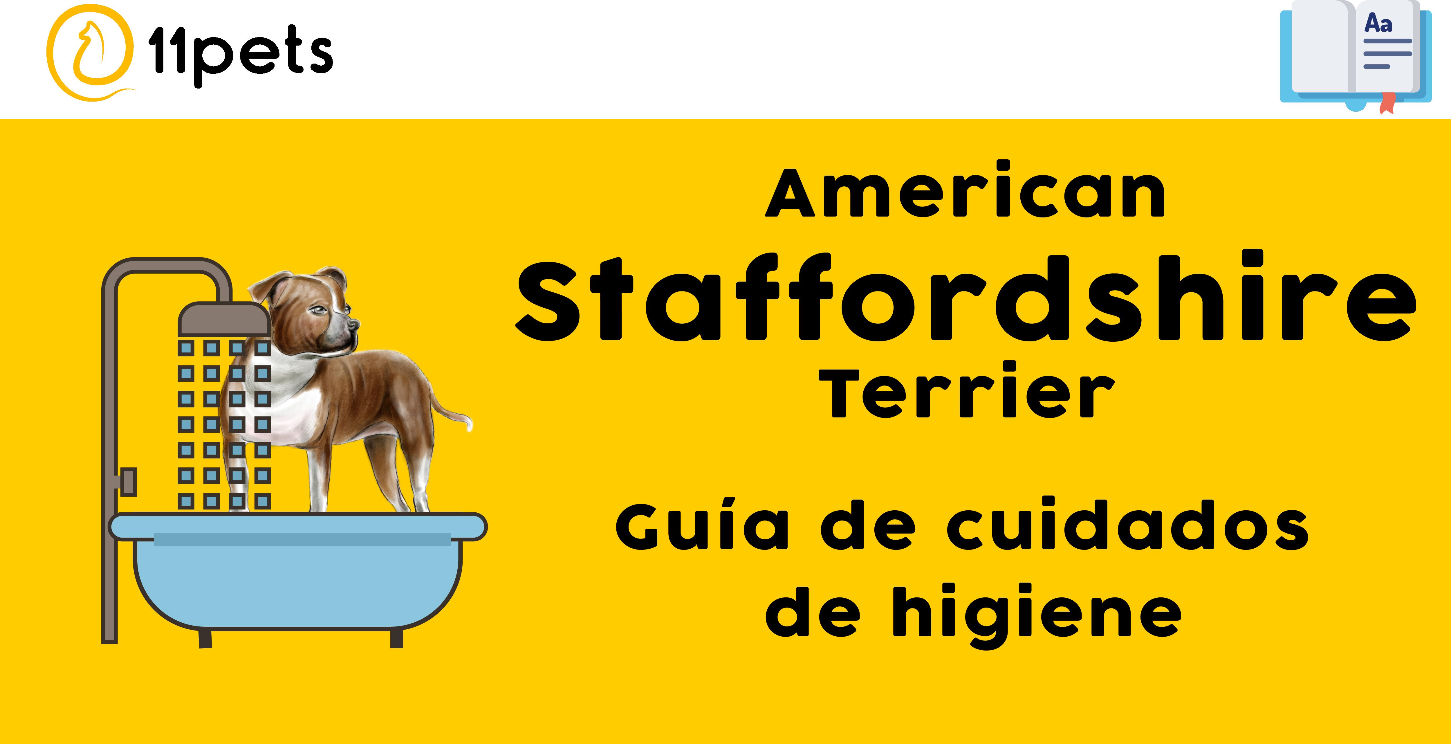 Guía de cuidados para la higiene de tu American Staffordshire Terrier