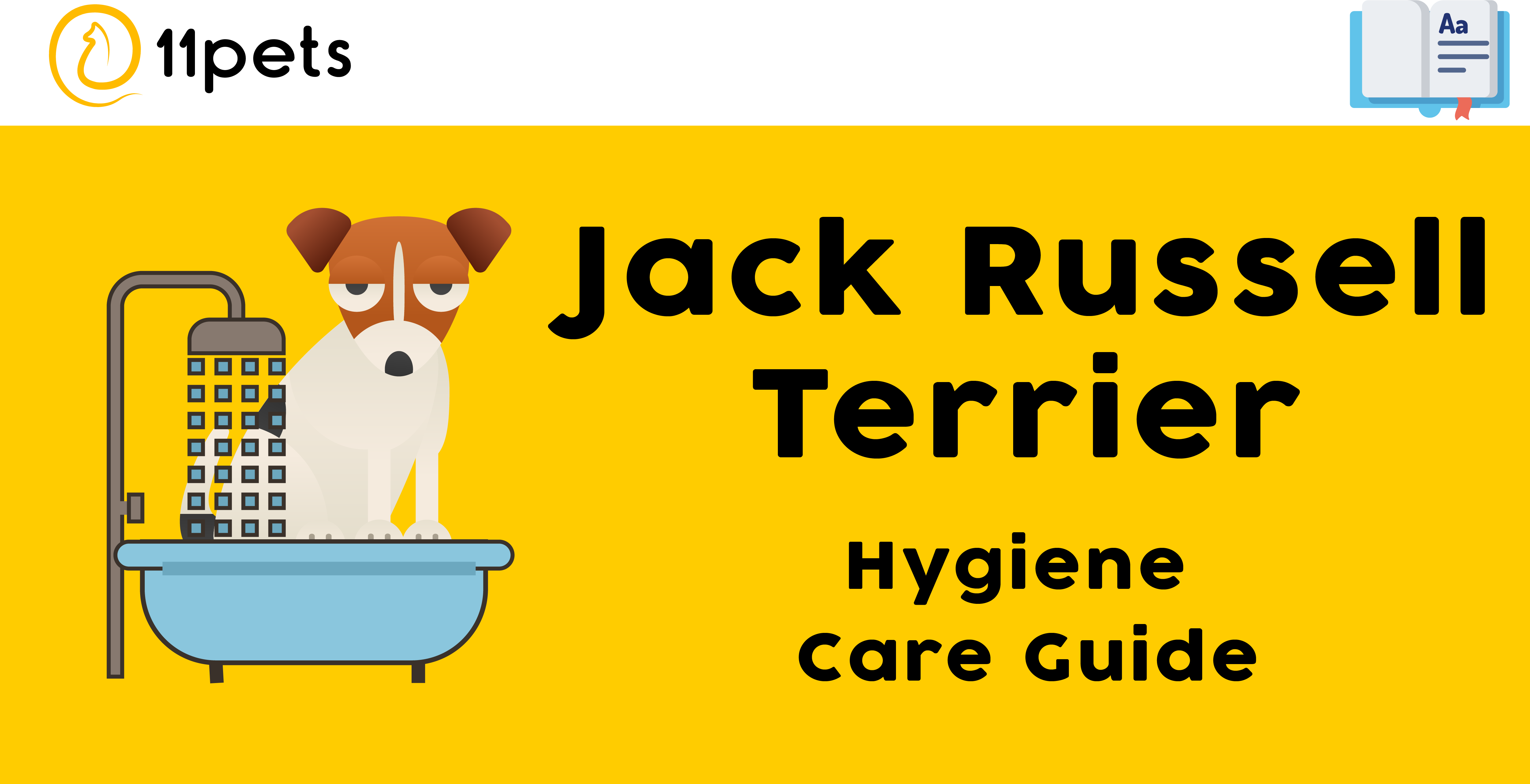 Hygiene Care Guide for Jack Russell Terrier