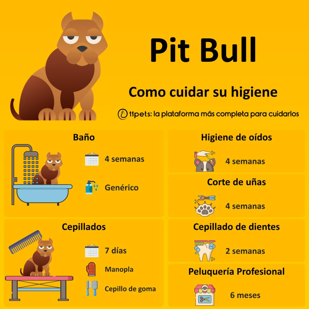 Guía de cuidados para la higiene de tu Pit Bull