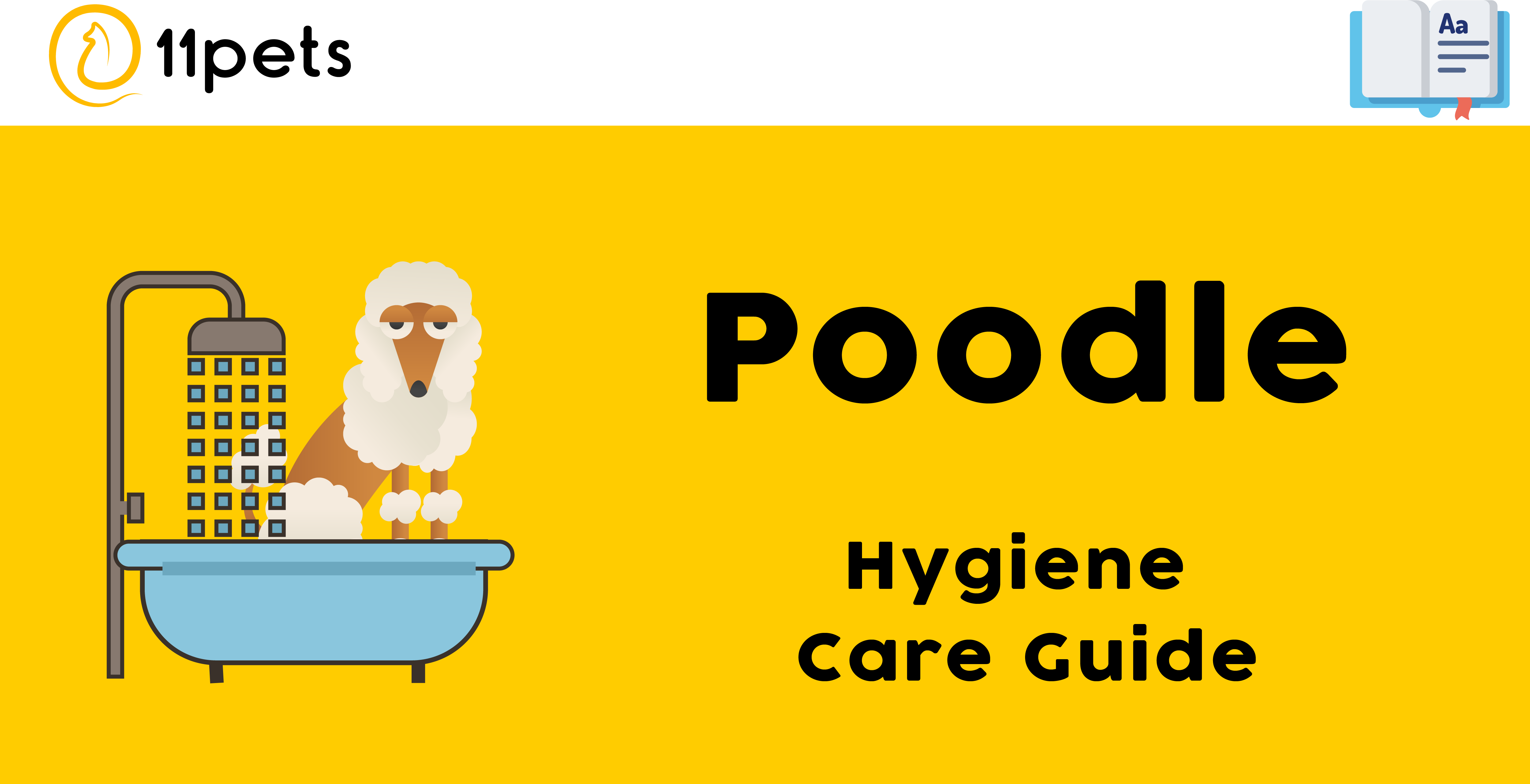 Hygiene Care Guide for Poodles
