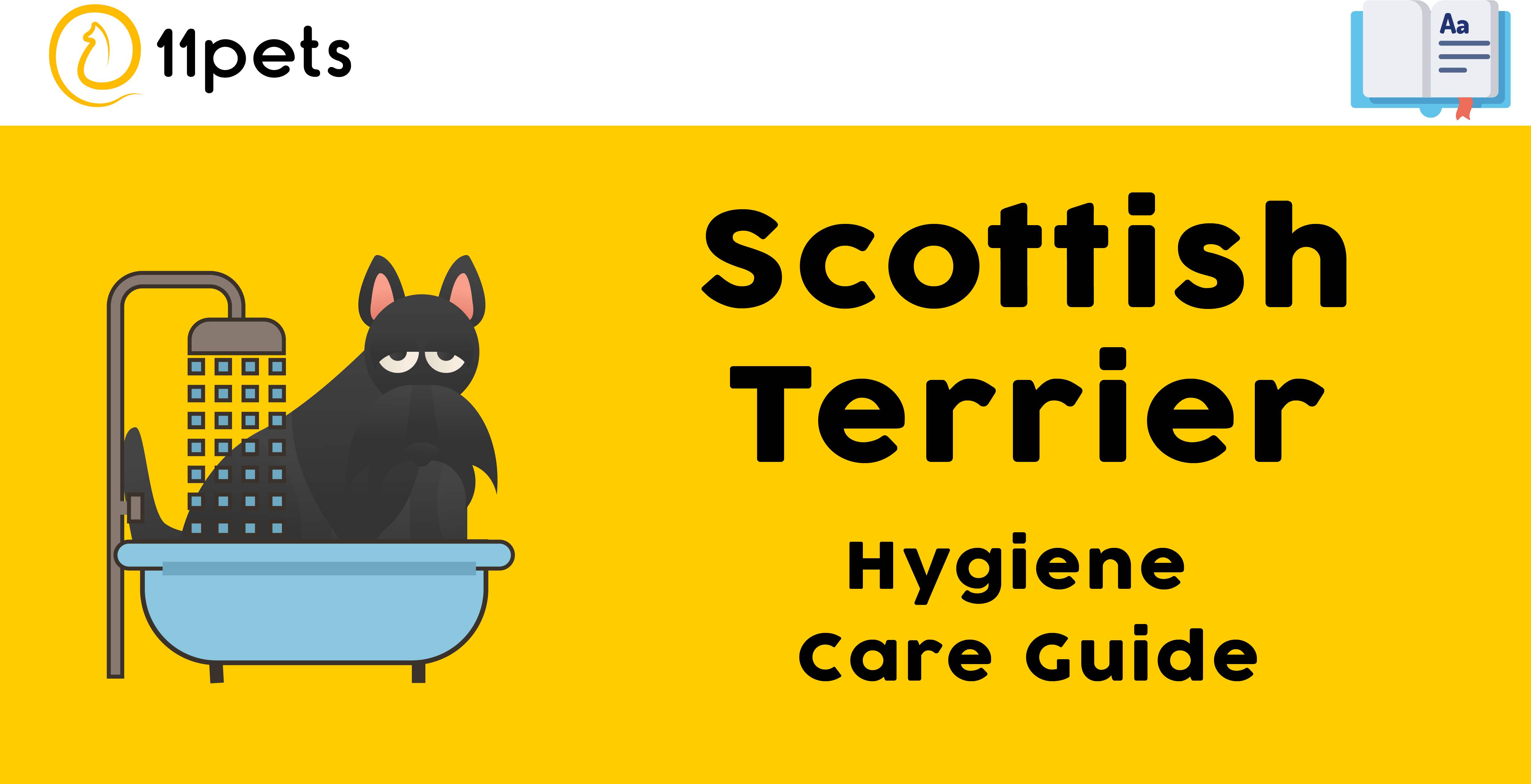 Hygiene Care Guide for Scottish Terriers