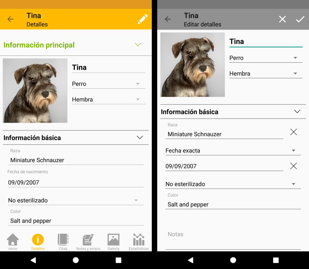 La información que puedes mantener para cada mascota – Información Principal