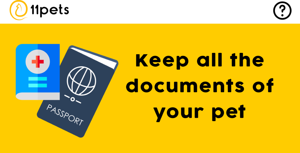 Guarda copias de todos los documentos de tu mascota.