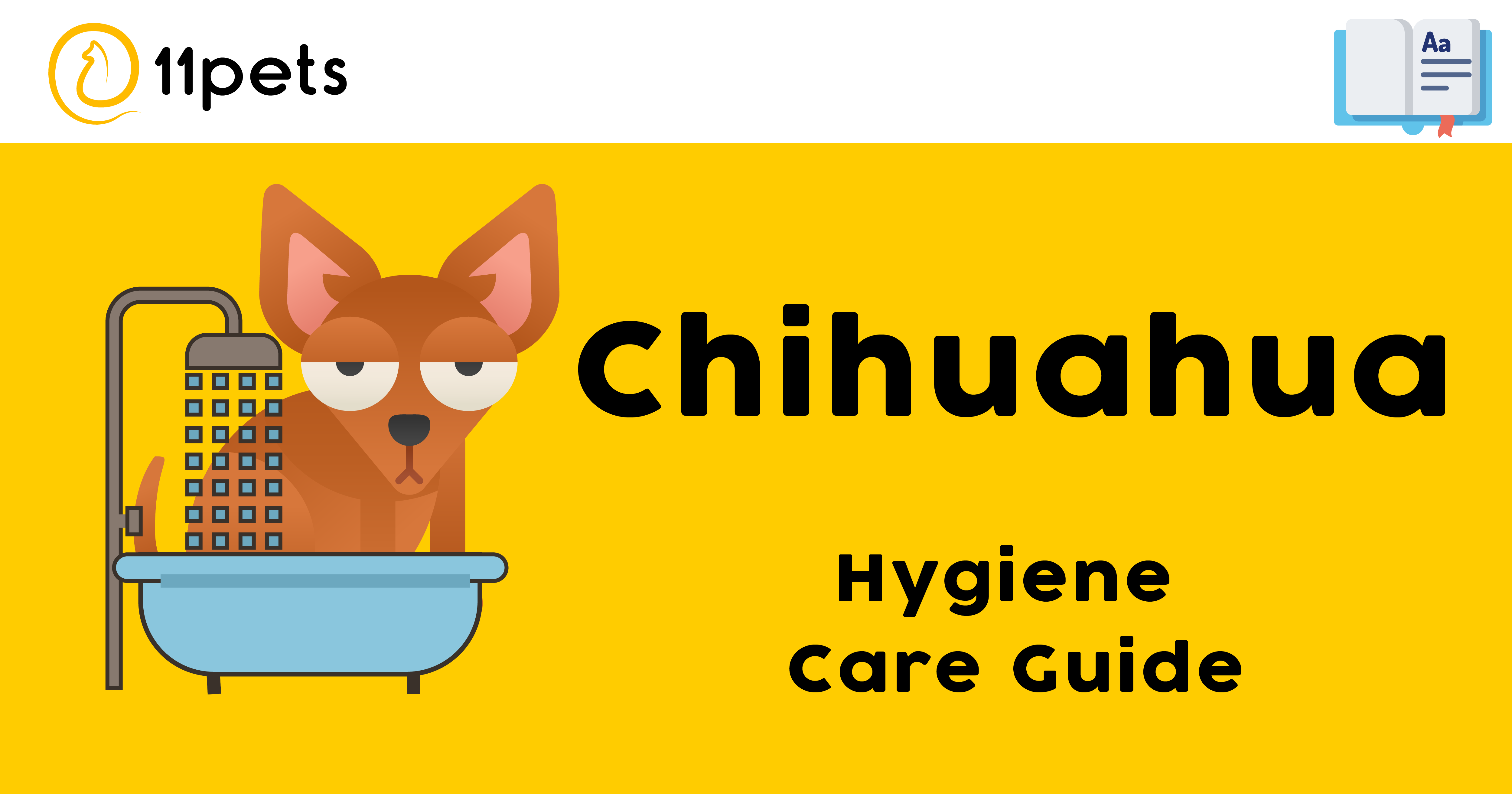 Hygiene Care Guide for Chihuahuas