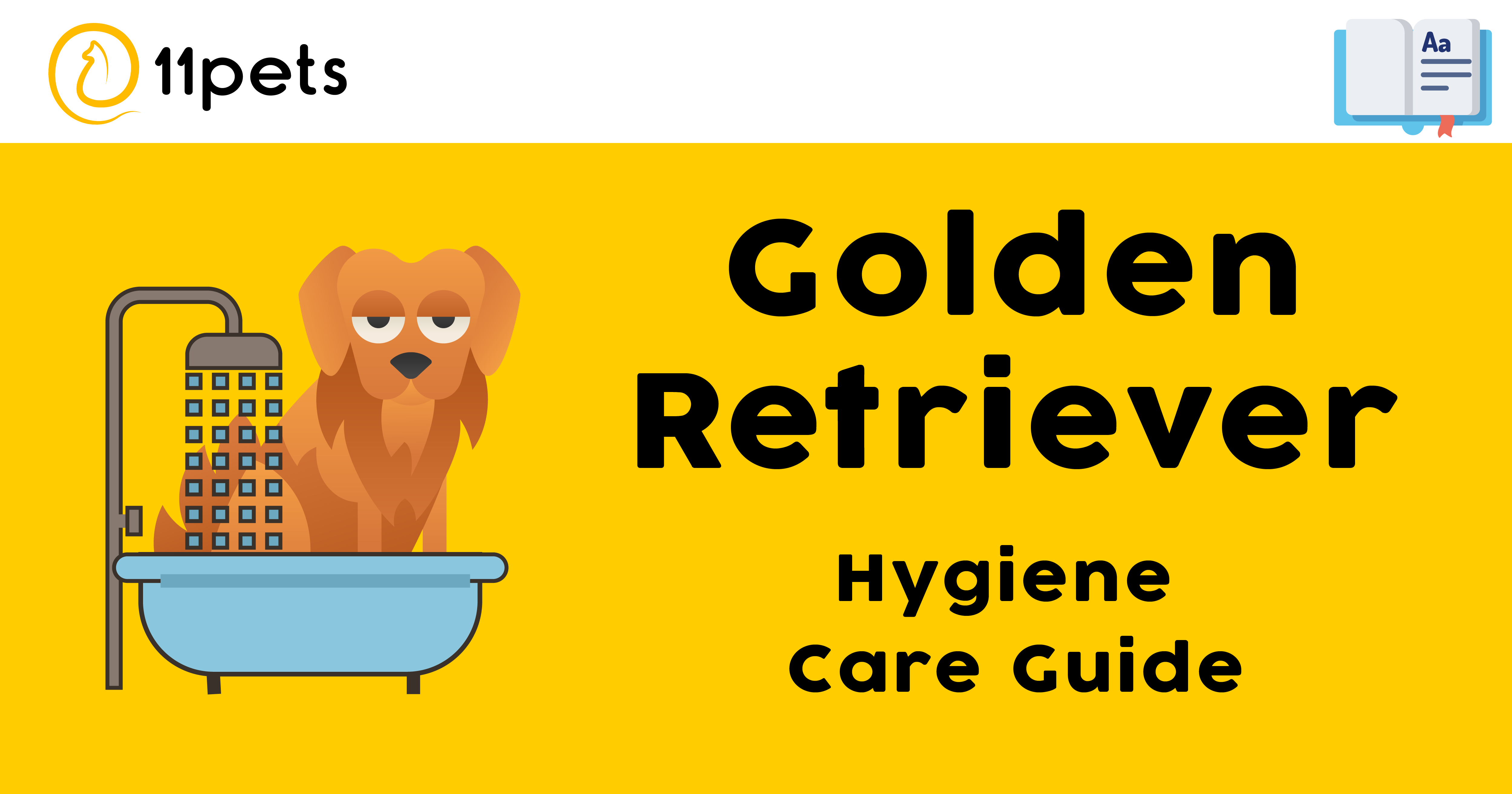 Collaborating with a group of experts lead by the groomer Susan Armengol, we have created a hygiene care-guide for each breed. Here we present the recommended guidelines for your Golden Retriever.