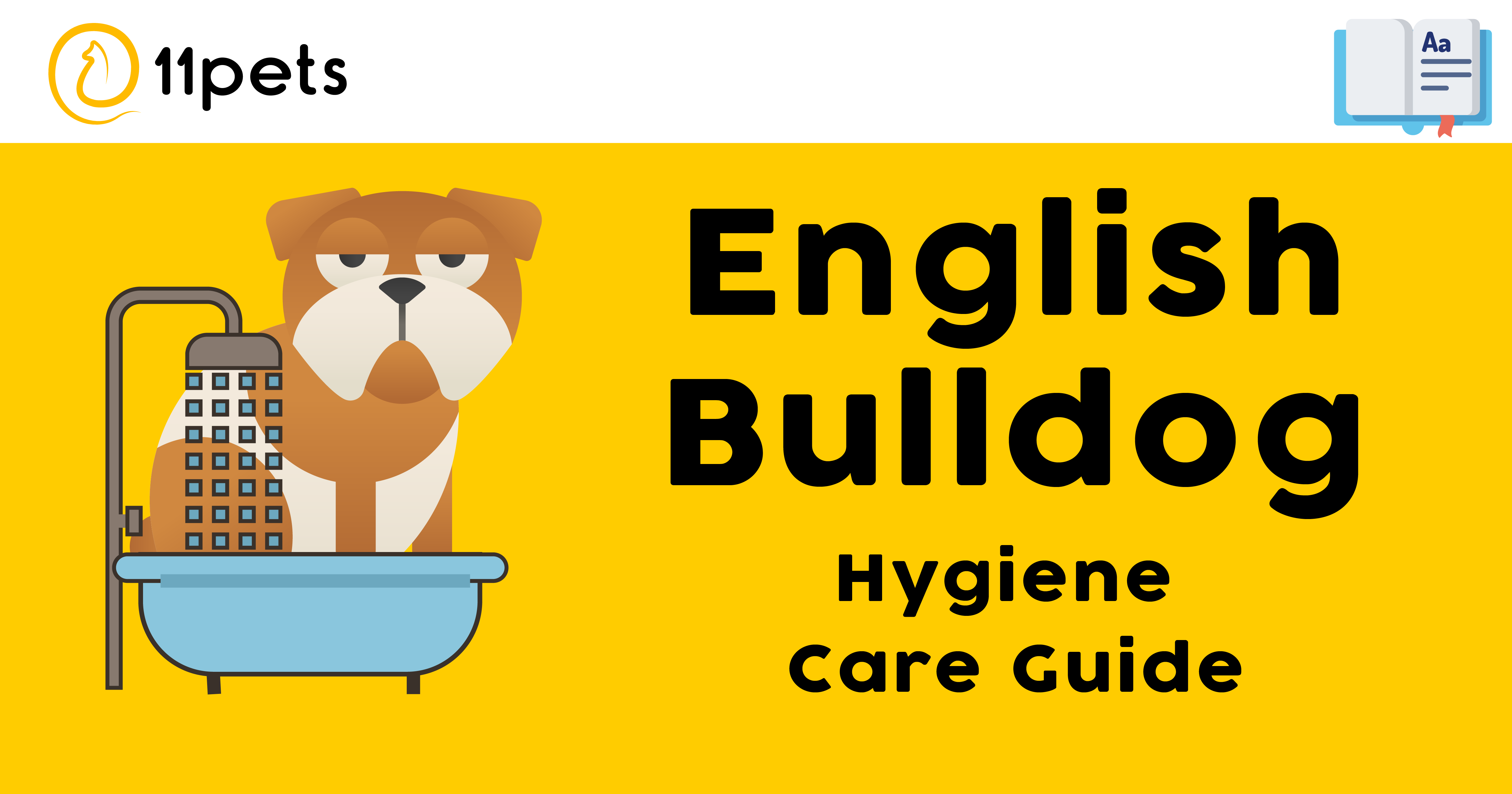 Hygiene Care Guide for English Bulldog
