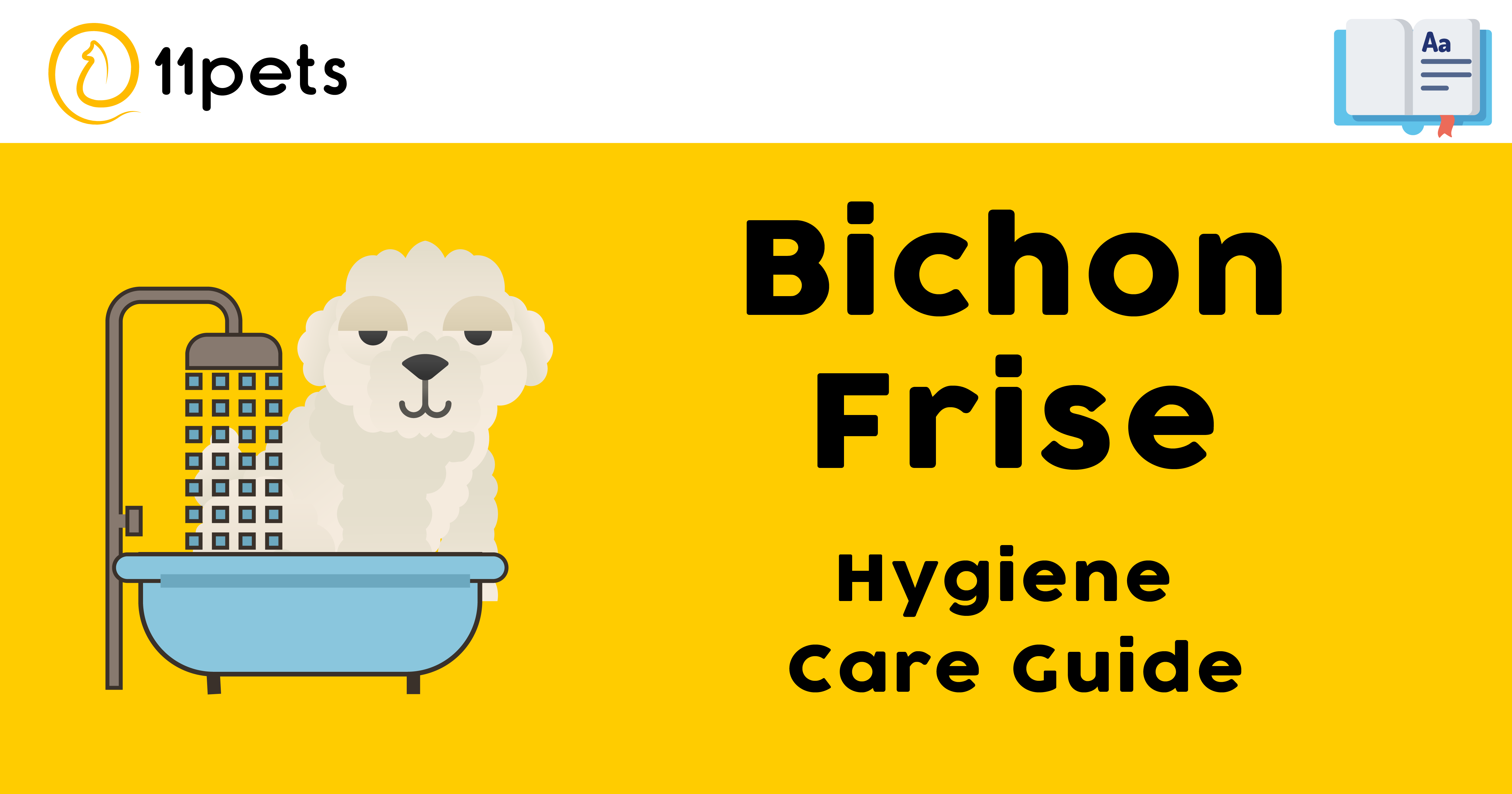 Hygiene Care Guide for Bichon Frise