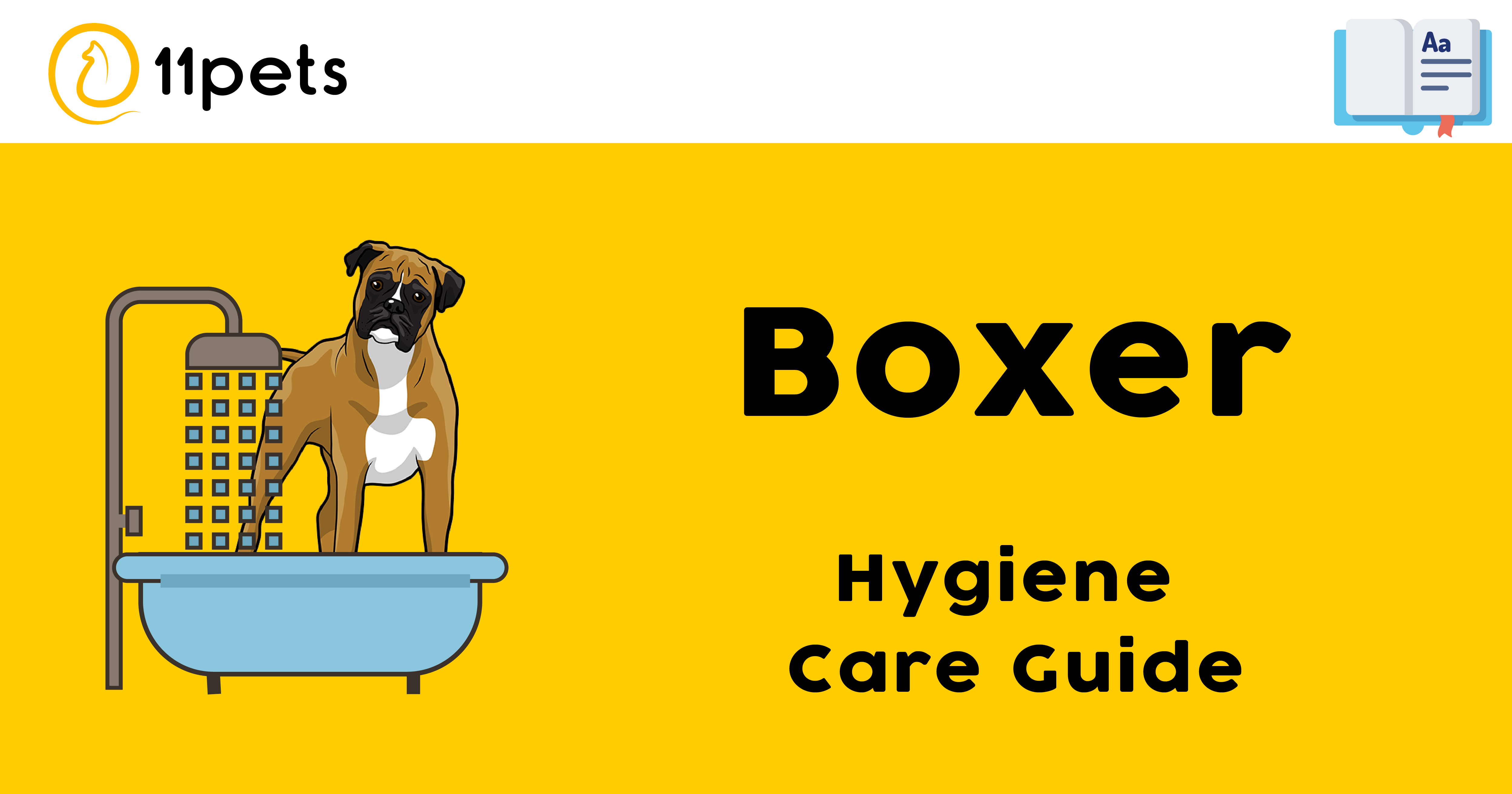 Hygiene Care Guide for Boxer