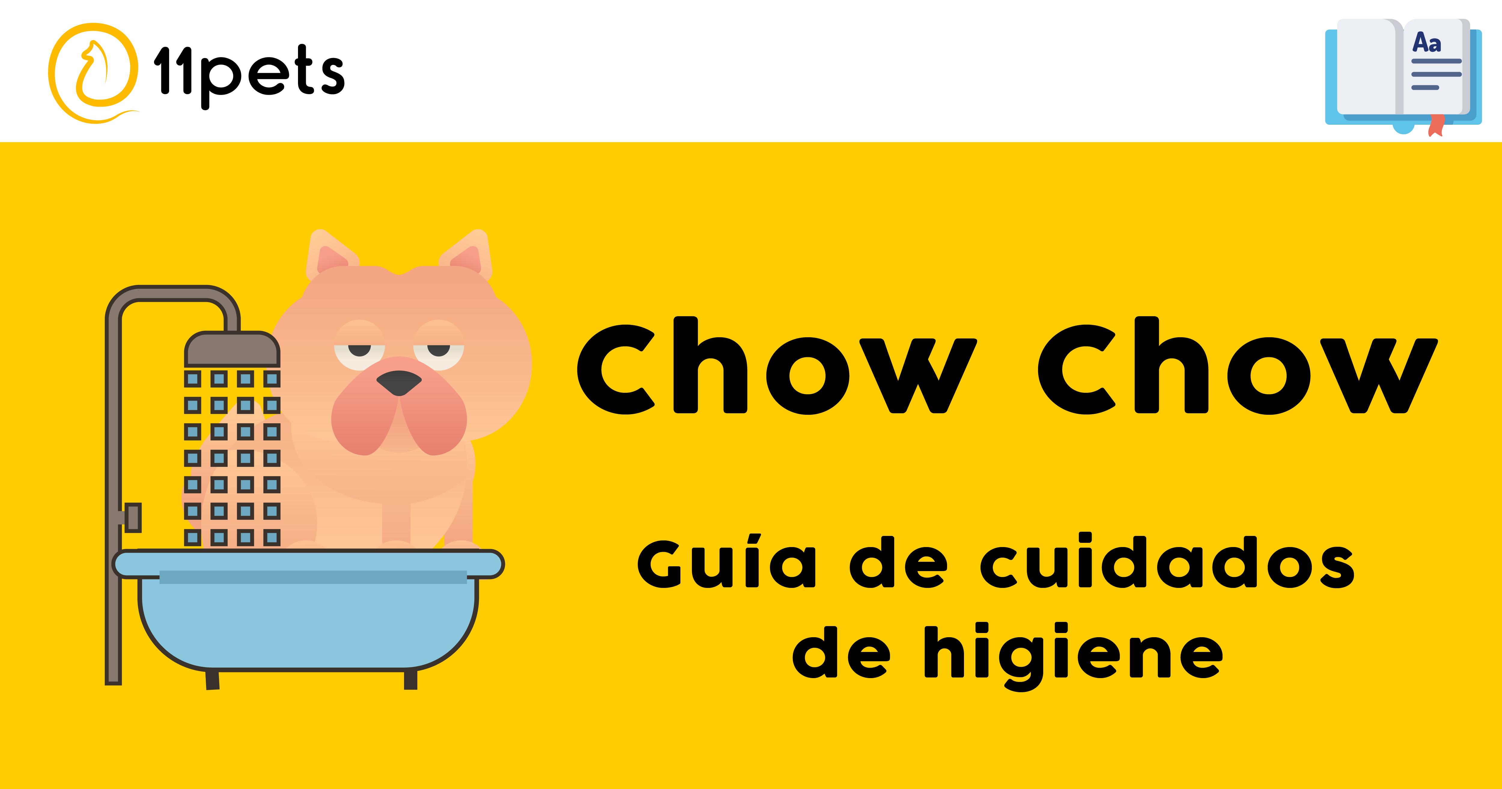 Guía de cuidados para la higiene de tu Chow Chow