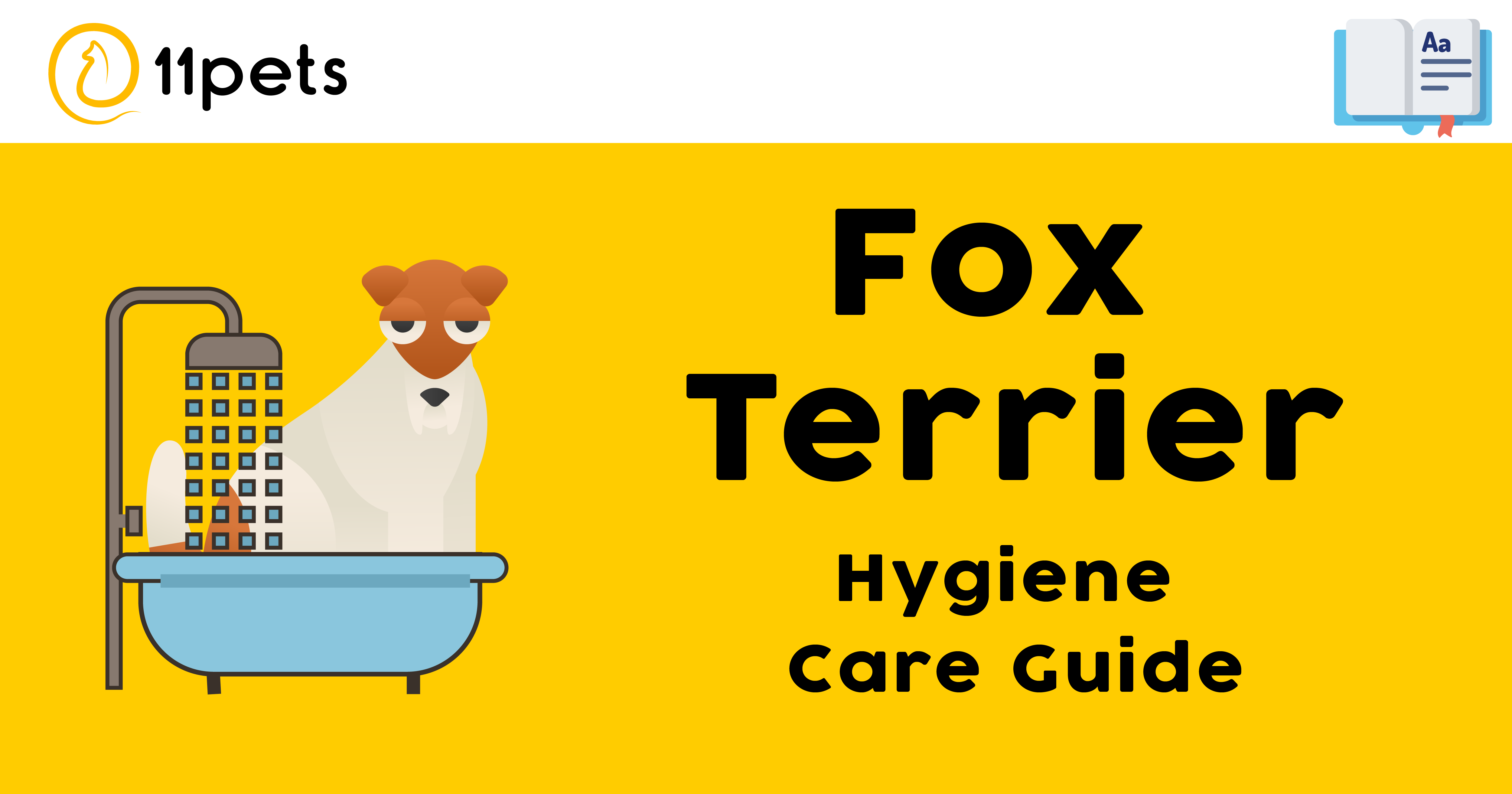 Hygiene Care Guide for Fox Terrier