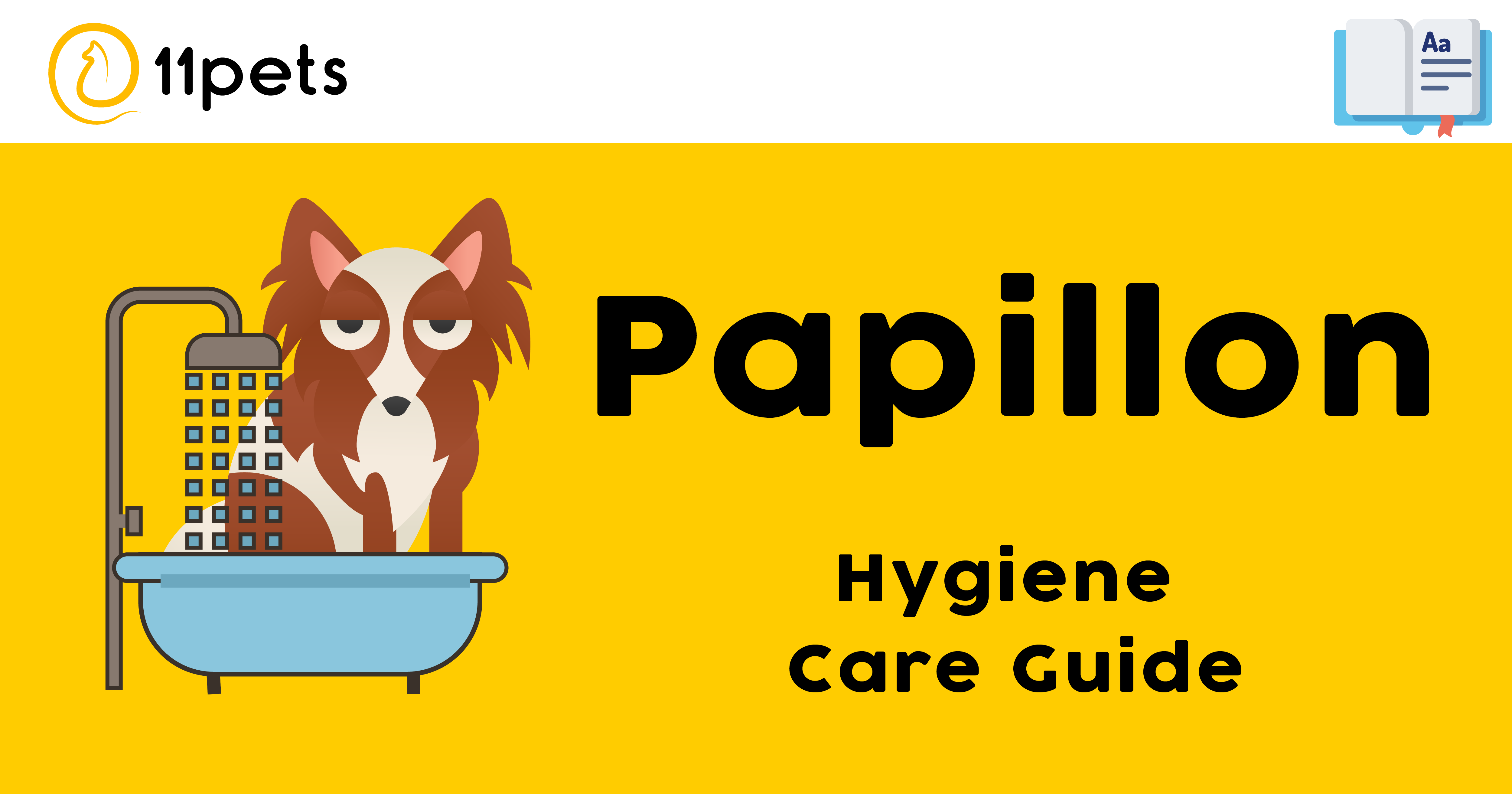 Hygiene Care Guide for Papillon