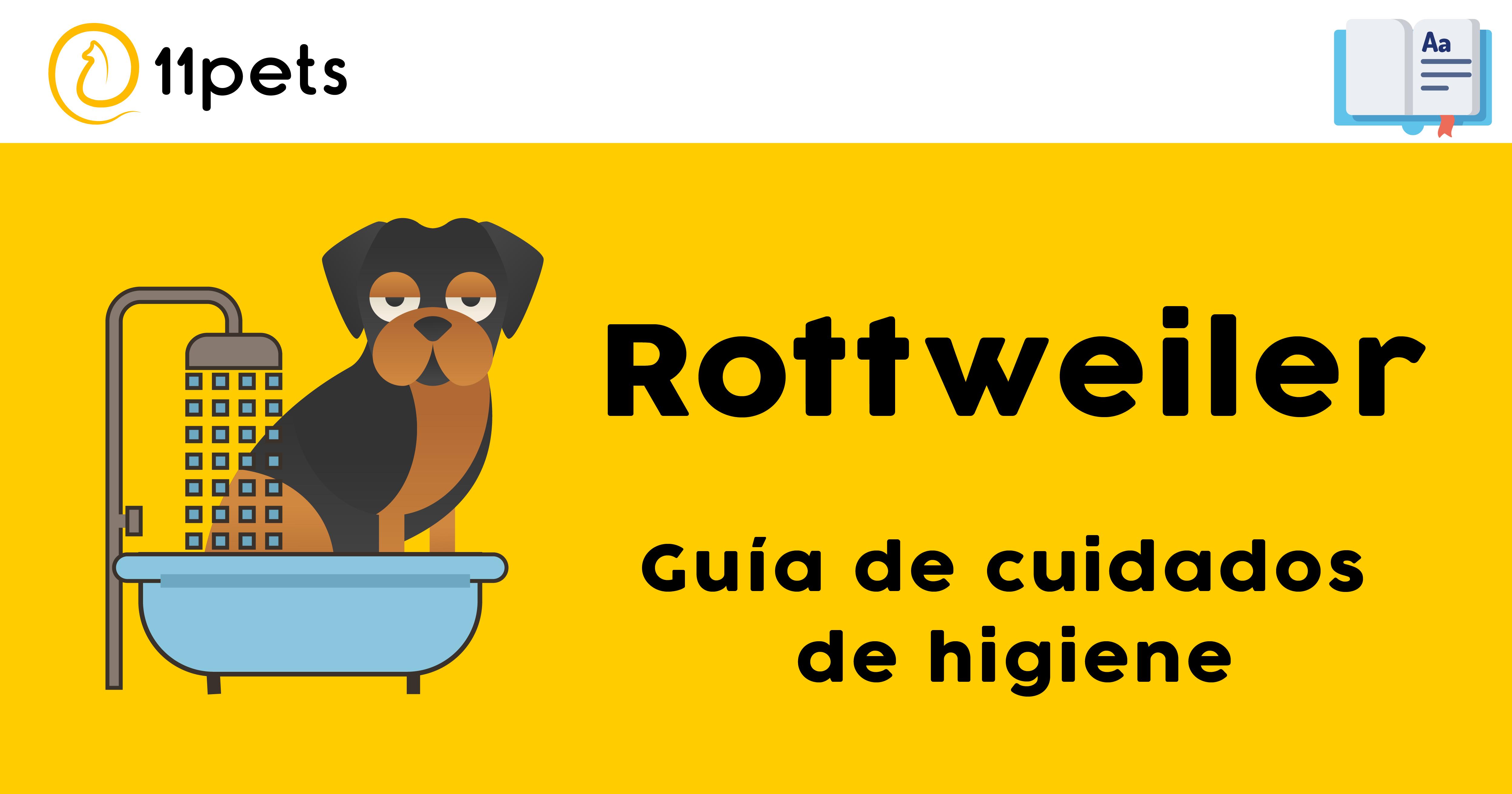 Guía de cuidados para la higiene de tu Rottweiler