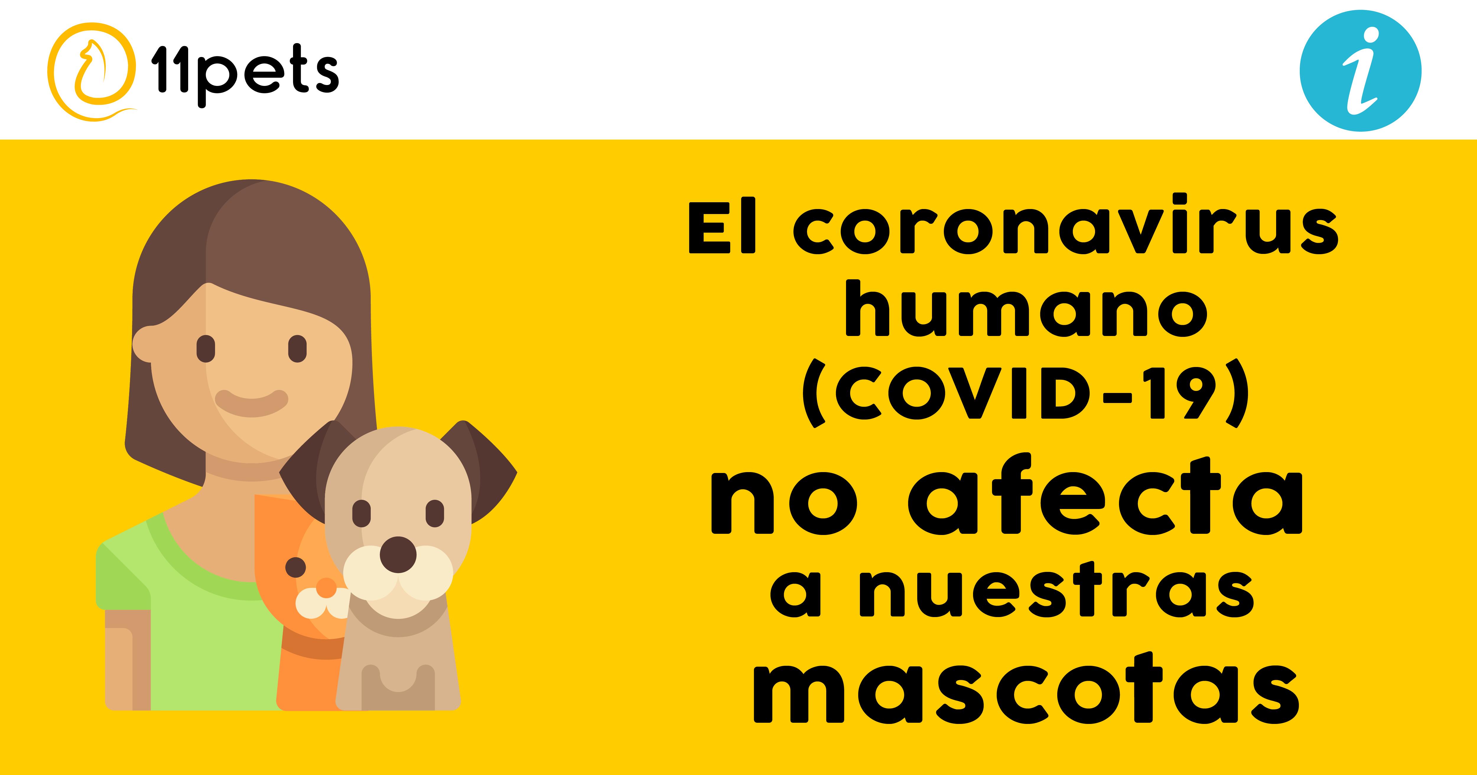 El coronavirus humano no afecta a nuestras mascotas
