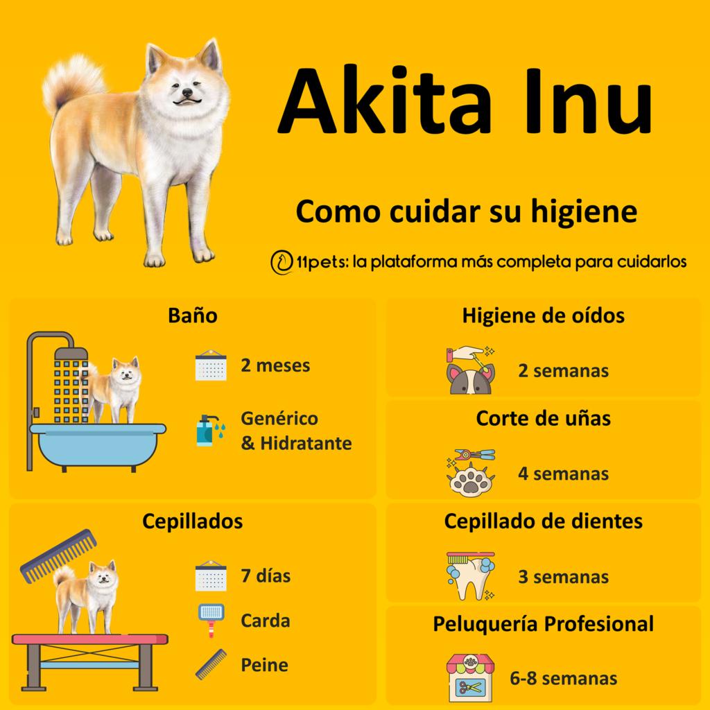 Guía de cuidados para la higiene de tu Akita Inu