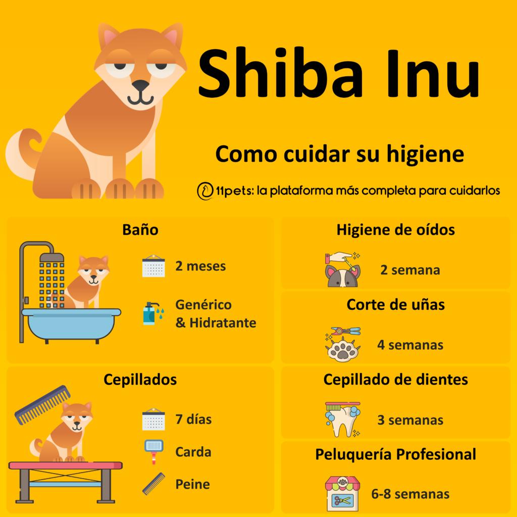 Guía de cuidados para la higiene de tu Shiba Inu