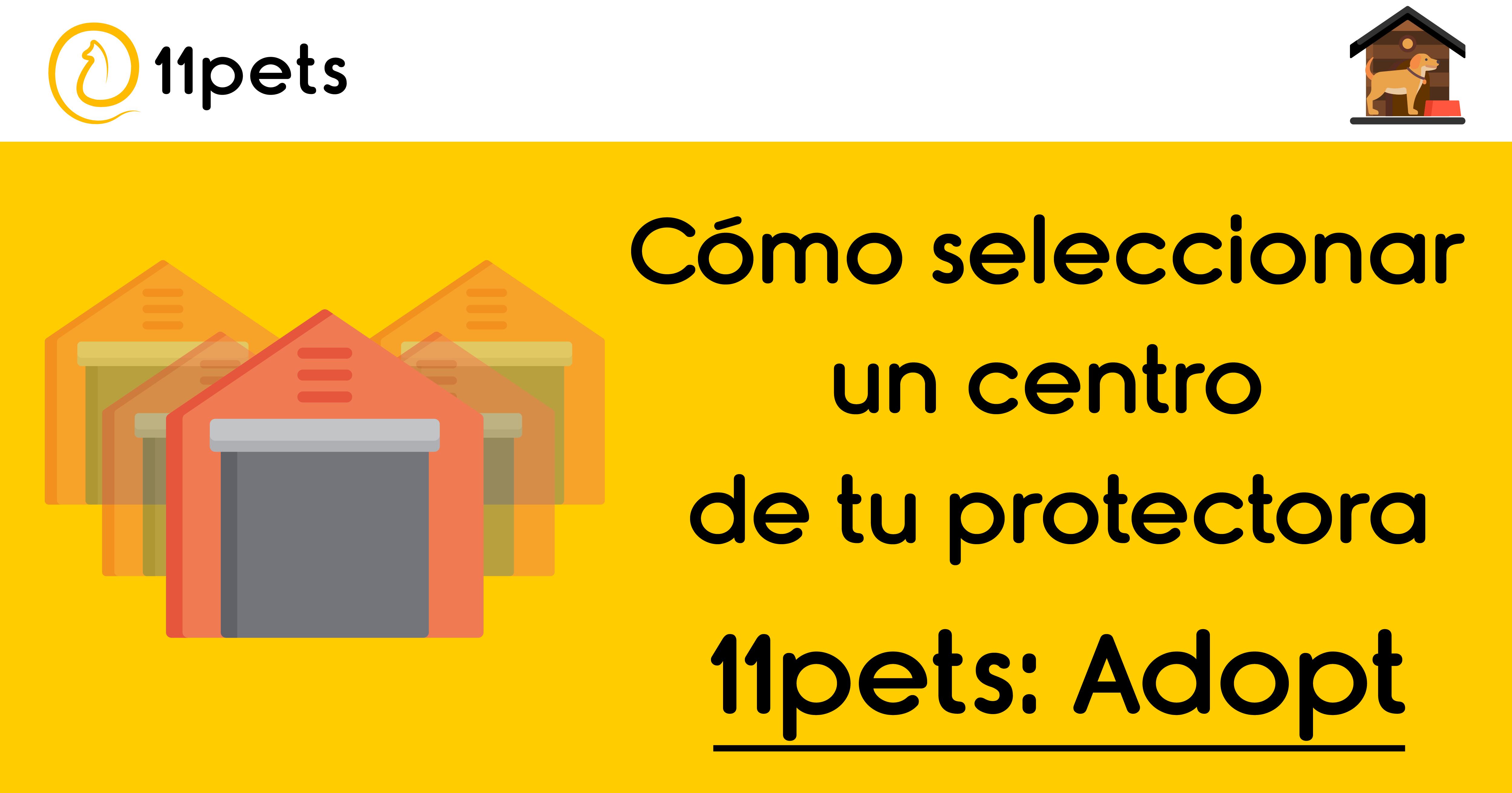 11pets: Adopt - Cómo seleccionar un centro de tu protectora