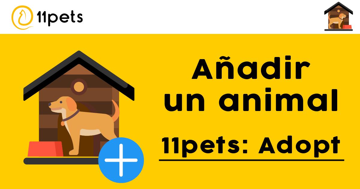 11pets: Adopt - Cómo añadir un animal