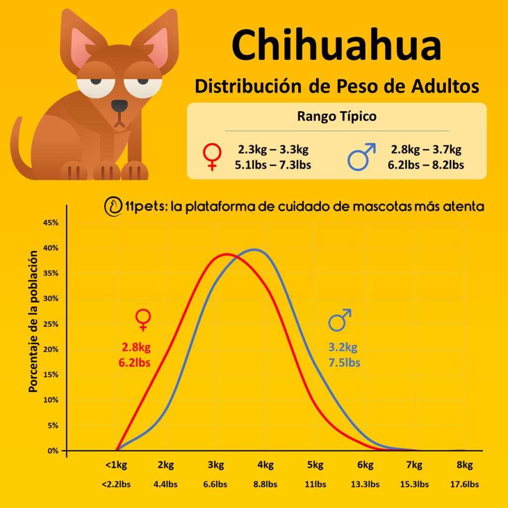 Peso Chihuahua