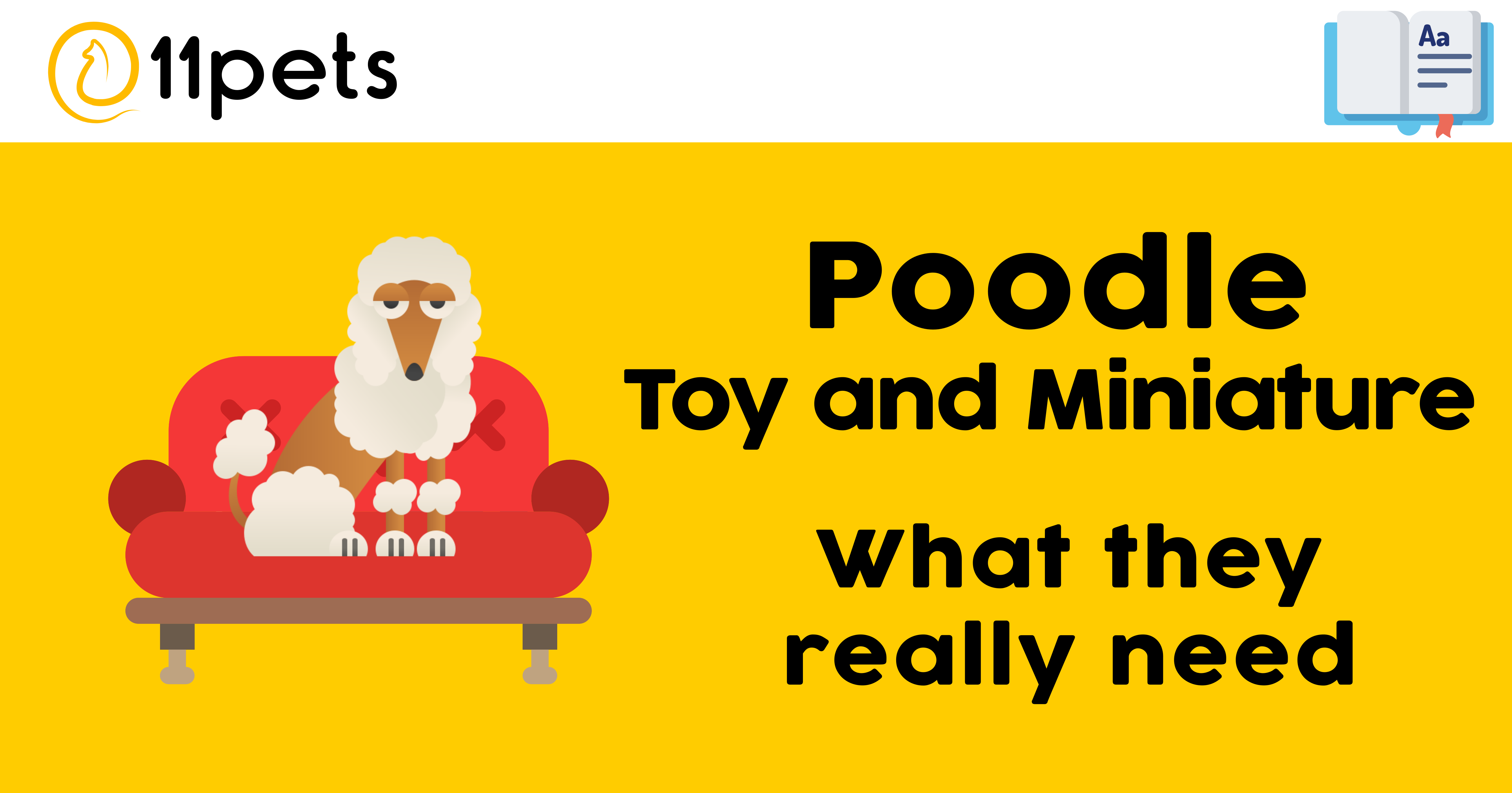 Poodle Toy and Miniature - What they really need