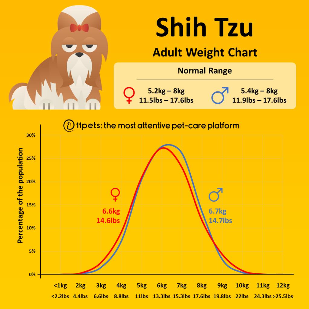 Shih Tzu Weight