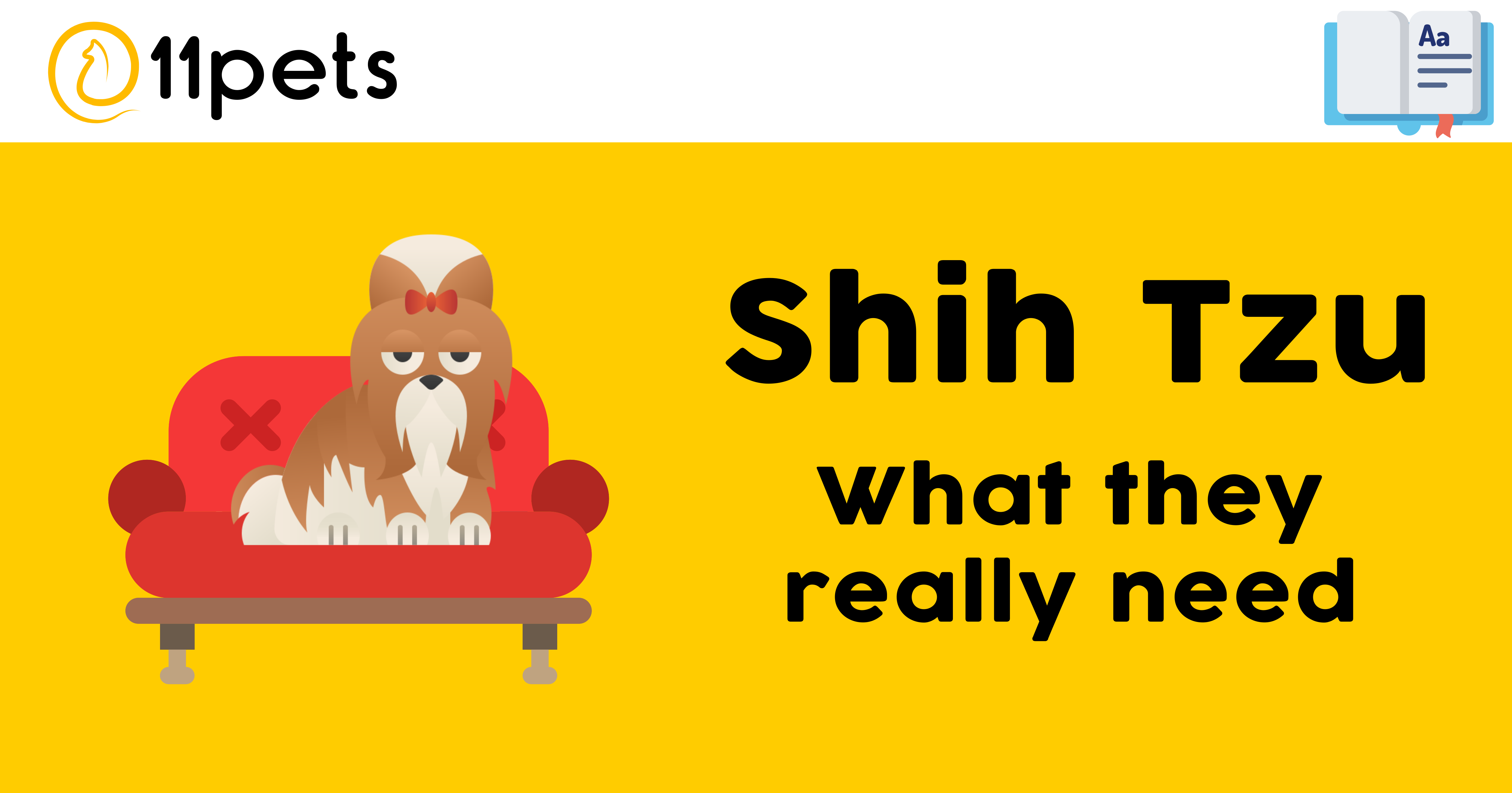 Shih Tzu - What they really need