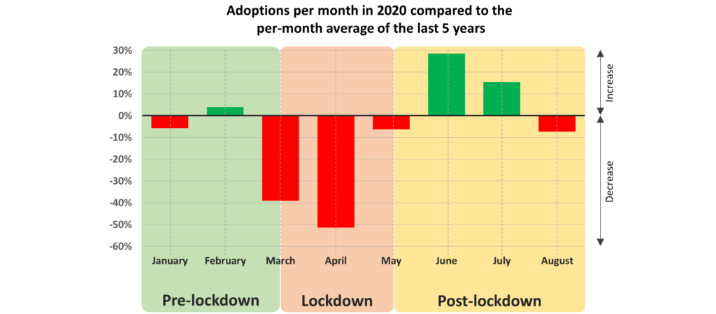 Adoptions per month in 2020 compared to the per-month average for the last 5 years