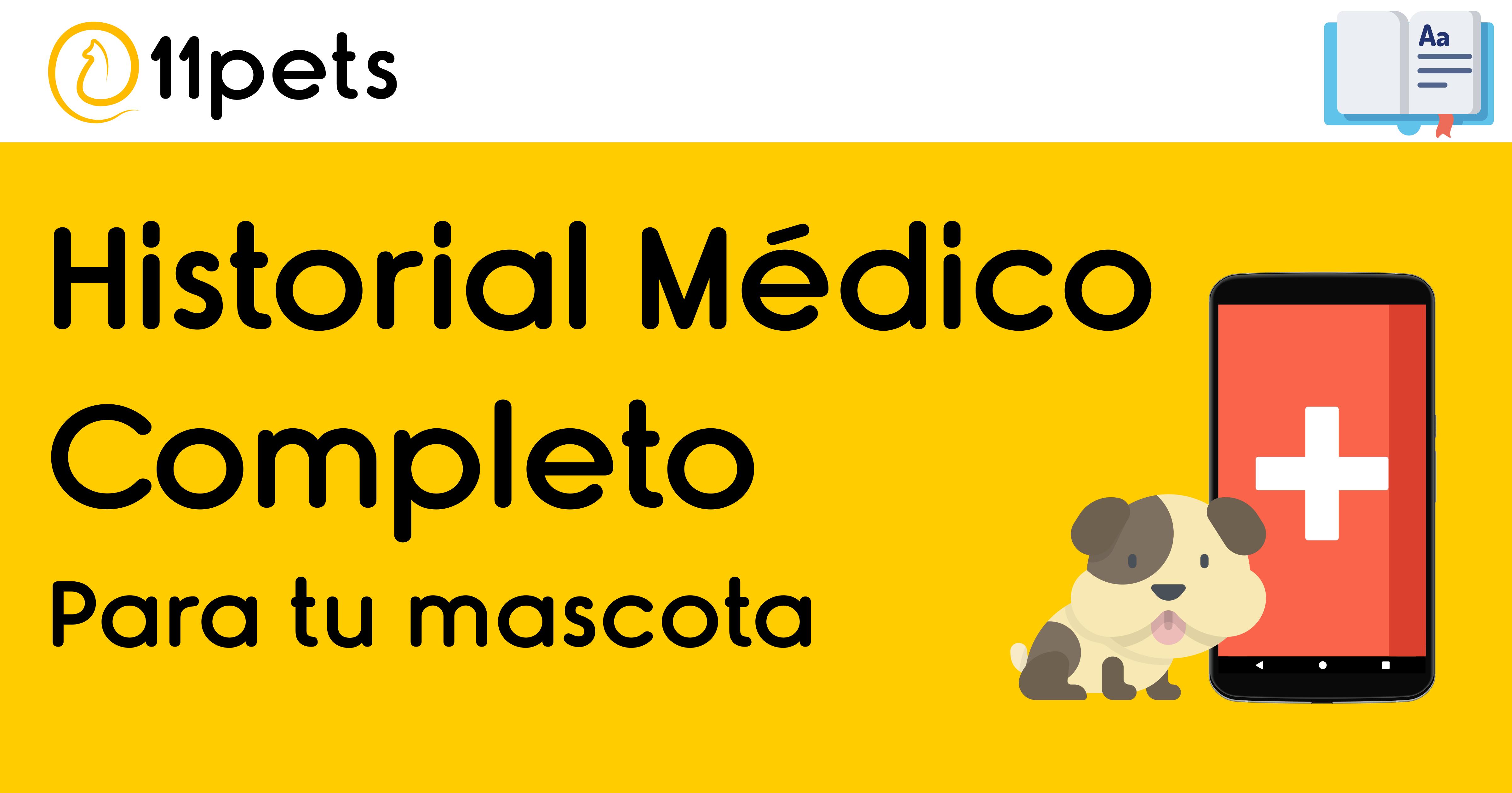 Mantén un historial médico completo para tu mascota con 11pets