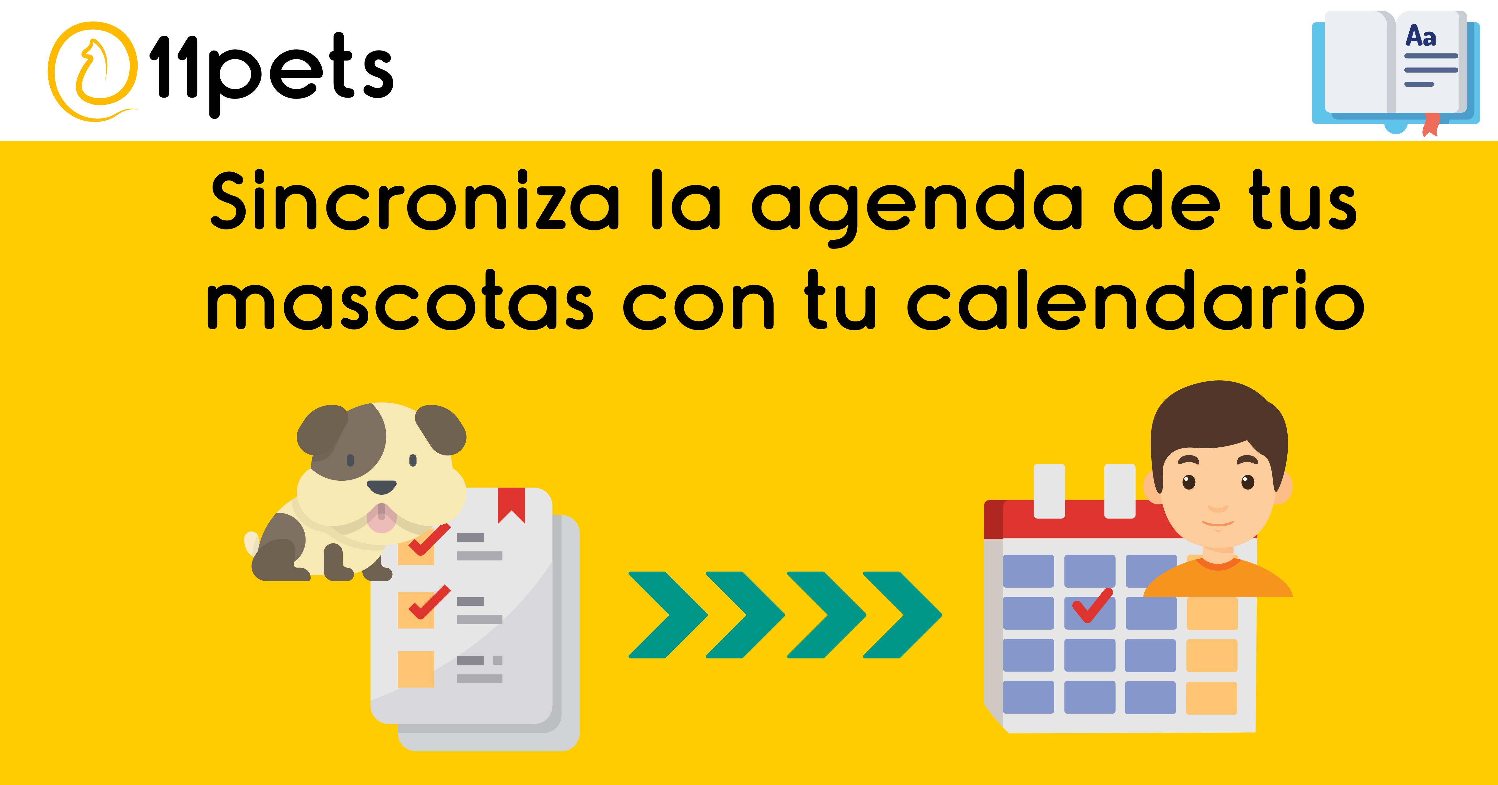 Sincroniza el horario de tus mascotas con el calendario de tu dispositivo