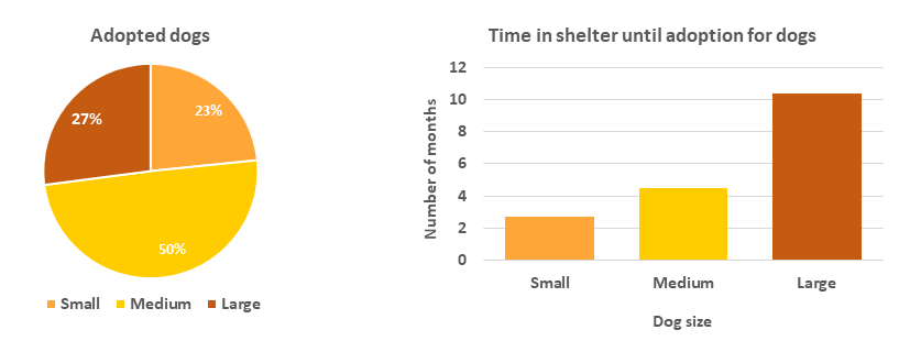 How the size of a dog affects its adoption