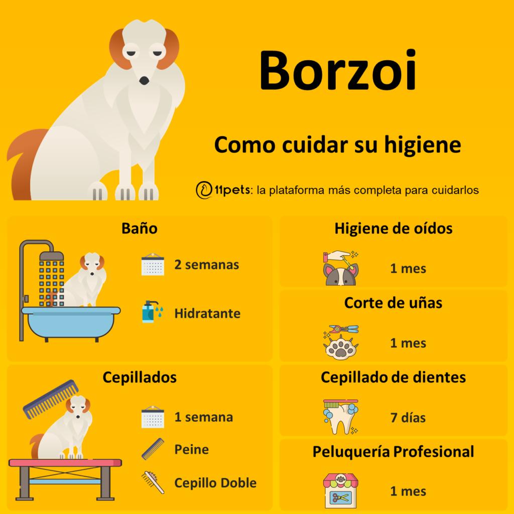 Guía de cuidados para la higiene de tu Borzoi