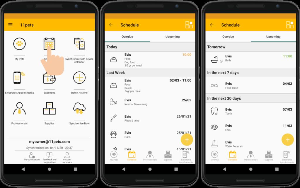 General schedule of the app